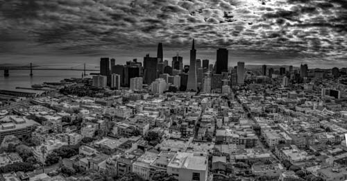 view from coit tower S.F b-w.jpg